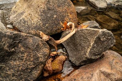 Landscape: Lower Bridalveil Falls   Yosemite National Park