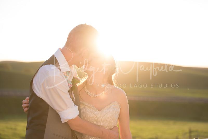 David and Maddy_Wedding Portraits_321