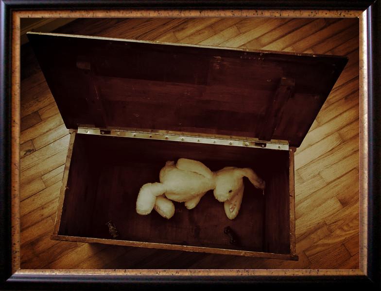 Forgotten Toy