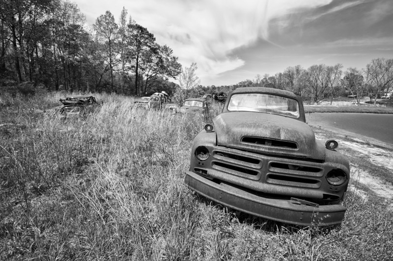 Field of Studebaker trucks in Clio. Barbour County