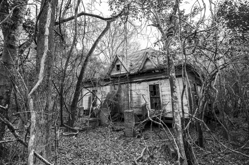 Old house, Ft Davis, AL. Macon County