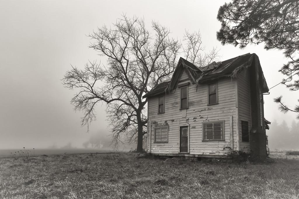 Forgotten in the fog.