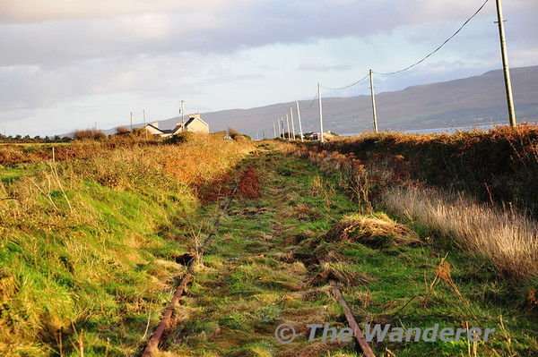 The Fenit Branch