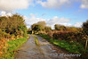 Farmers Crossing at North Kerry Junction with the track of the Fenit Branch nearest the camera. Sat 17.11.12