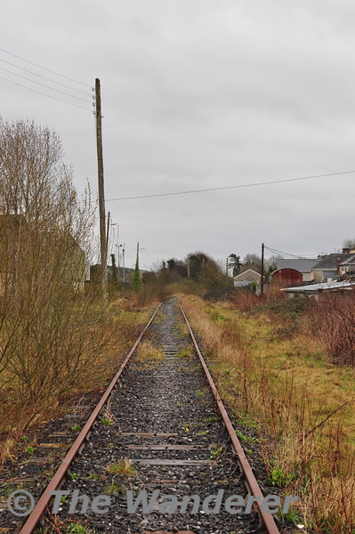 Looking towards Limerick. The line disappears into the undergrowth. Sun 31.03.13