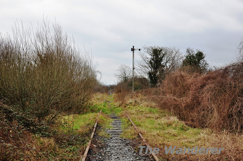 Looking towards Limerick from the Dock Road Level Crossing. Sun 31.03.13