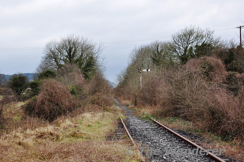 Looking towards Foynes from the Dock Road Level Crossing. Sun 31.03.13