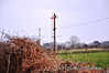 This signal still survives in the middle of a field near Ardfert. Sun 03.03.13