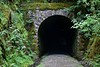 Eastern portal of Barnagh Tunnel. Mon 06.06.16