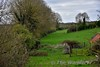 The Roscrea - Birr line at Sharavogue where a road crossed over it. Looking towards Birr. Tues 04.04.17