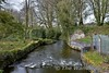 At Roscrea Fish Farm at Drumakeenan the railway crossed over the Little Brosna River. Tues 04.04.17