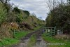 Former Level Crossing Moynure No. 1. Looking towards Roscrea. Tues 04.04.17