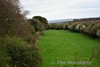 The Roscrea - Birr line at Sharavogue where a road crossed over it. Looking towards Roscrea. Tues 04.04.17