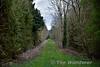 Former Level Crossing at Brosna Halt. Looking towards Roscrea. Tues 04.04.17