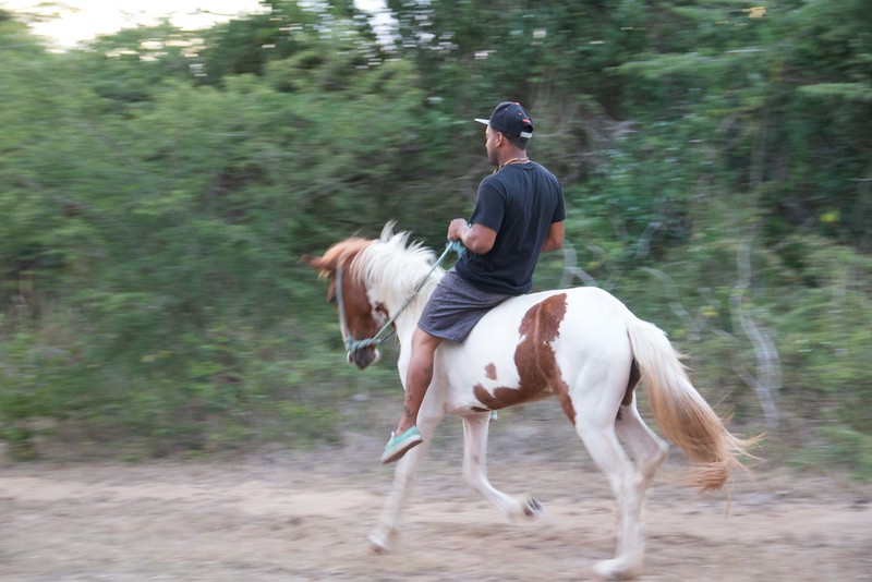 A common mode of transportation for some locals on Vieques.