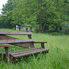 Bench in Meadow