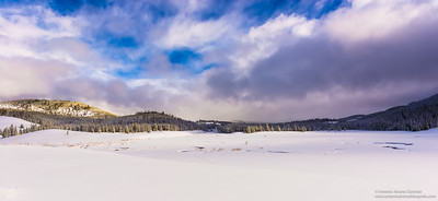 En la soledad del invierno / In the loneliness of winter