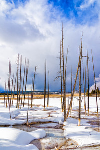 Invierno en Yellowstone / Winter in Yellowstone