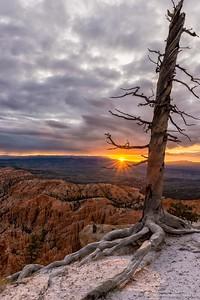 Primeros rayos de sol sobre Bryce cañon / First rays of sun over Bryce Canyon