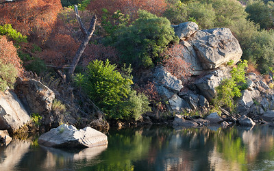 Fall Color on American River