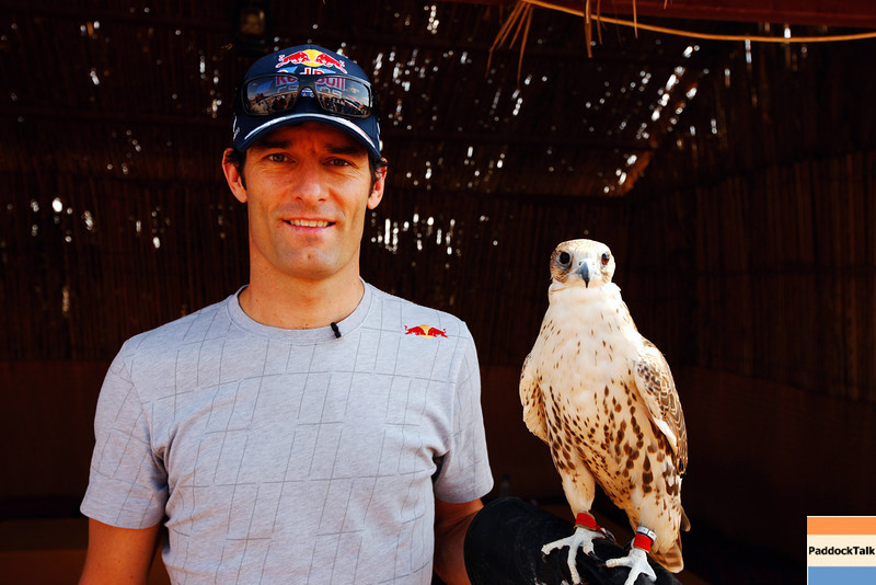 GEPA-09111199001 - FORMULA 1 - Grand Prix of Abu Dhabi, Yas Marina Circuit, preview, Sand Dune Safari. Image shows Mark Webber (AUS/ Red Bull Racing) with a falcon. Photo: Getty Images/ Mark Thompson - For editorial use only. Image is free of charge