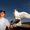 GEPA-09111199002 - FORMULA 1 - Grand Prix of Abu Dhabi, Yas Marina Circuit, preview, Sand Dune Safari. Image shows Mark Webber (AUS/ Red Bull Racing) with a falcon. Photo: Getty Images/ Mark Thompson - For editorial use only. Image is free of charge