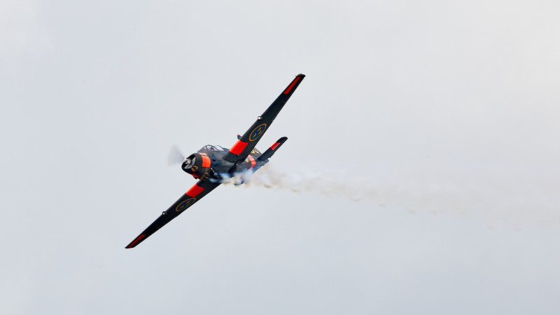 Forsvarsmaktens Flygdag 2019 # 435