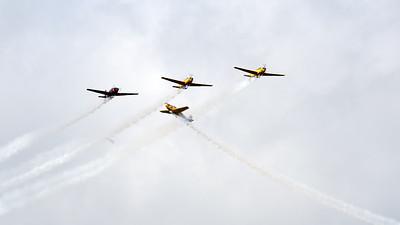 Forsvarsmaktens Flygdag 2019 # 450