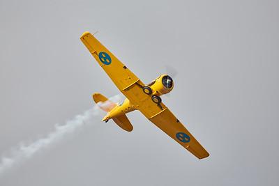 Forsvarsmaktens Flygdag 2019 # 403