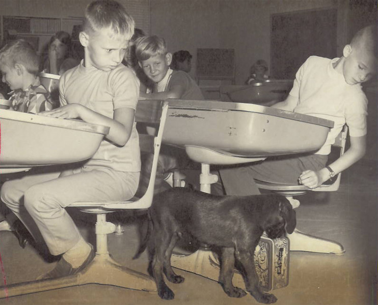 Historic Fort Benning:  dog in school