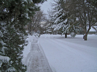 Some people did have the ability to plow the sidewalks.  Even though they couldn't drive their cars I guess it was better than nothing.  Gave them a good feeling for having spent a lot of money on a snow machine that had been sitting in the garage collecting dust for a few years : )