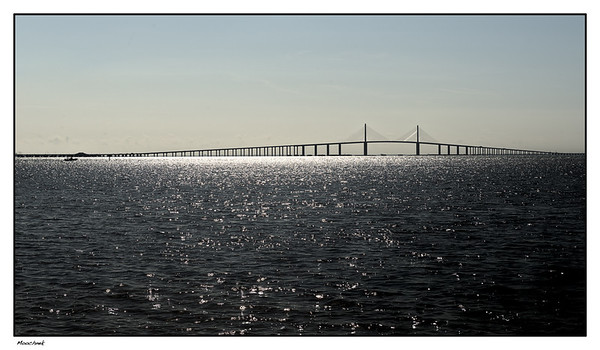 The Famous Skyway Bridge