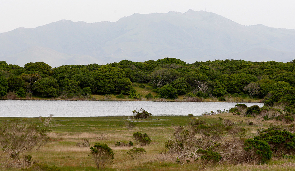 . A full Machine Gun Lake on the Bureau of Land Management area of Fort Ord on Wednesday, April 5, 2017.  The above average rainfall in Monterey County has filled the approximately forty-five ponds, lakes and vernal pools to full levels.   (Vern Fisher - Monterey Herald)