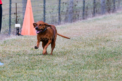 fast (1259 of 1695)