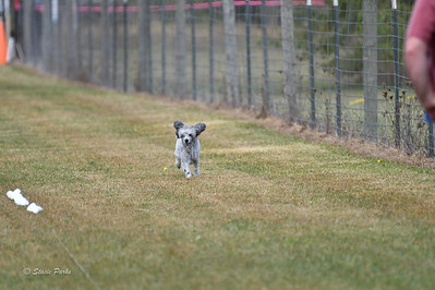 fast (1670 of 1695)