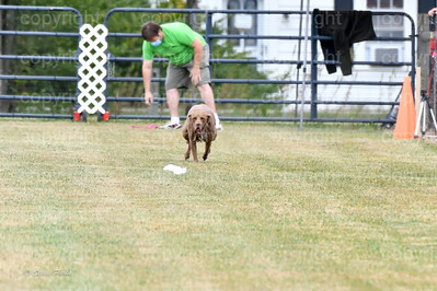 fast (1073 of 1695)