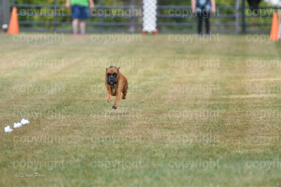 fast (1470 of 1695)