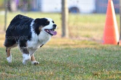Sophie (17 of 17)