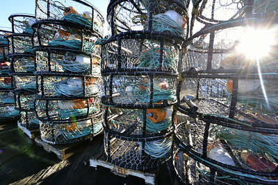 The crab pots are stacked up on the dock, awaiting the opening of crab season.  The season won't open until January 15 because the crab are too small right now.