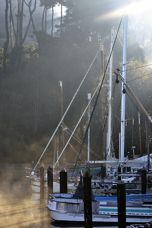 Morning mist at the harbor.