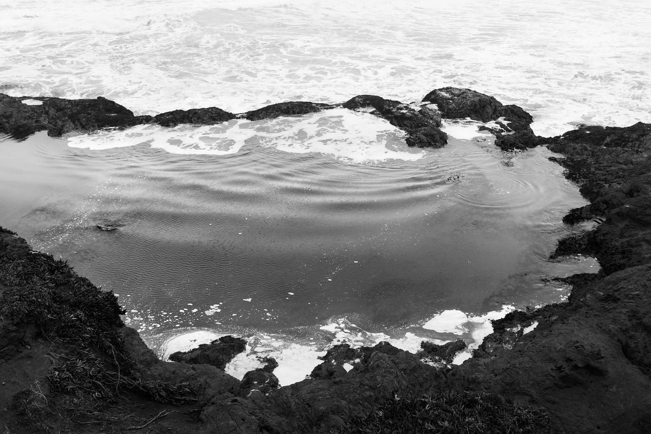 Tide pool, Pudding Creek beach.