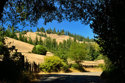 Comptche-Ukiah Road, on the way to Montgomery Woods State Reserve (going east from Mendocino).