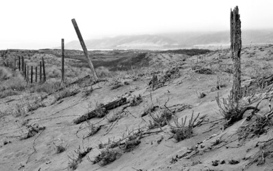 Dilapidated fence in the Ten Mile Dunes, looking towards the Lost Coast.