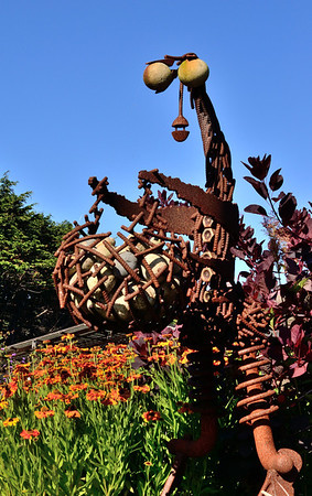 Lots of cool sculptures at Mendocino Coast Botanical Gardens.