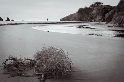 Beach shot!