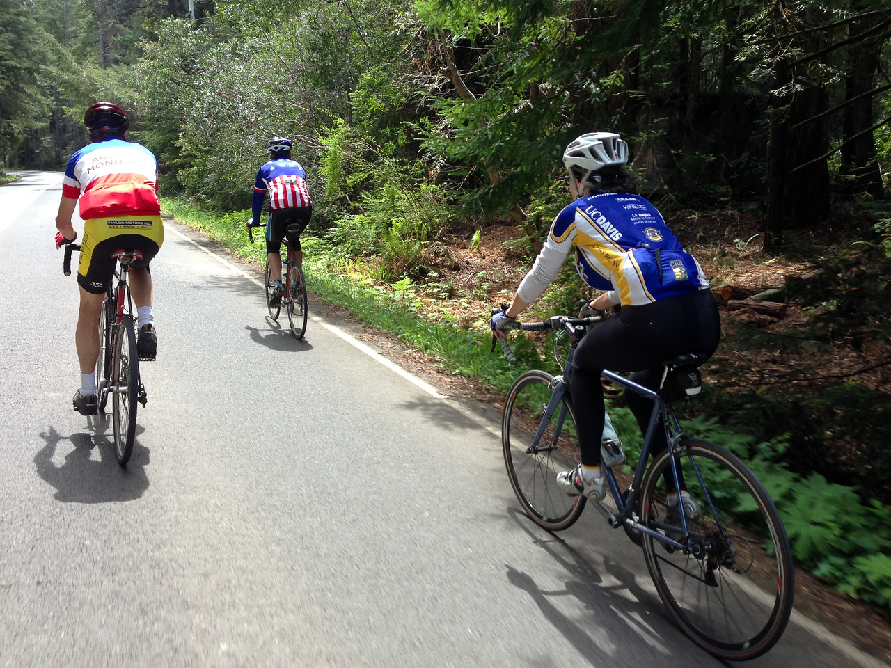 One of the rare moments when I was close enough to snap a pic of Rick, Liz, & Guy on the Comptche-Ukiah Road.