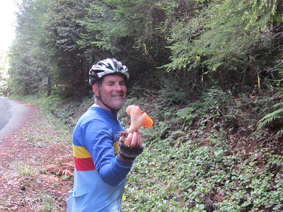 A happy Rick Humphreys with a large Chanterelle mushroom from the edge of Greenwood to Philo road