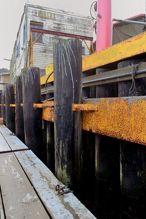 Lots of quality textures and things to photograph at the docks.