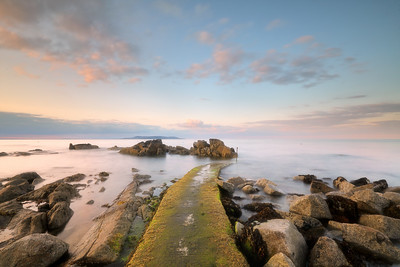 Forty Foot Sandycove -1L8A0562