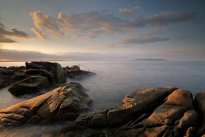 Forty Foot Sandycove -1L8A0549